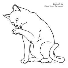 Cats Coloring Pages Animal Pet Kitten To 11