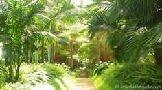 Royal Greenhouses of Laeken, Brussels   smarksthespots.com
