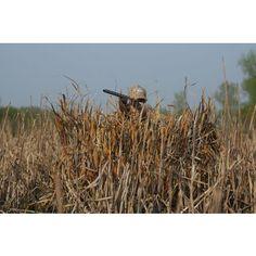 Avery\u00ae Real Grass Concealment \u2013 Season Specific