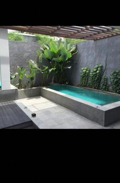 Mini Swimming Pool, Mini Pool, Swimming Pools Backyard, Swimming Pool Designs, Lap Pools, Indoor Pools, Patio Chico, Landscape Design, Garden Design