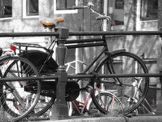 Amsterdam @movemy
