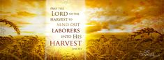 Pray the Lord of the harvest to send out laborers into his harvest Luke 10:2