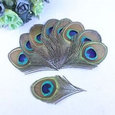 beautiful-20-50-100pcs-8-12-cm-feathers-peacock-eye-decoration