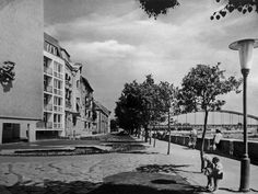 Korányi fasor - 1962