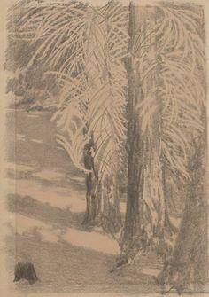 Dwa modrzewie w śniegu - Leon Wyczółkowski
