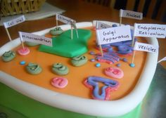 Edible Plant Cell Cake Projects cakepins.com