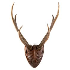 Large Pair of Black Forest Roe Deer Antlers Mounted on Carved Plaque | From a unique collection of antique and modern animal sculptures at http://www.1stdibs.com/furniture/more-furniture-collectibles/animal-sculptures/
