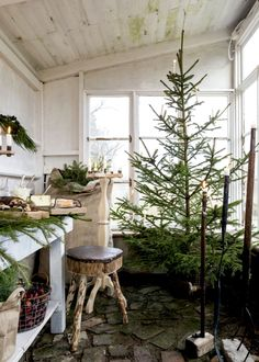 A Scandinavian Christmas Dinner in the Greenhouse (coco kelley) Scandinavian Christmas Trees, Christmas Tree Lots, Scandi Christmas, Natural Christmas, Noel Christmas, Christmas Tree Decorations, White Christmas, Vintage Christmas, Holiday Decor