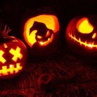 Galleria foto - Perché le zucche diventano lanterne ad Halloween? Foto 4