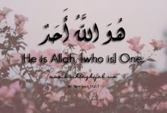 Islamic Daily: One