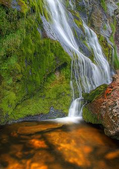 Powerscourt Waterfall; Ireland