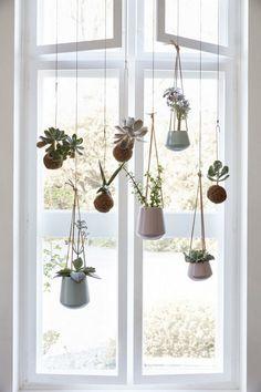 20+ Amazing Succulent Garden Ideas for 2017 #garden #gardendesign #gardendesignideas