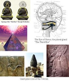 "Rene Descartes called the pineal gland the ""seat of the soul"", believing it is unique in the anatomy of the human brain in being a structure not duplicated on the right and left sides. This observation is not true, however; under a microscope one finds the pineal gland is divided into two fine hemispheres."