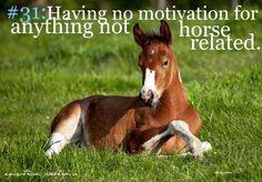 Equestrian Problem... So happens during school. No motivation
