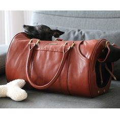 Italian greyhound Stefano is a real fan of beautiful & comfy MERIKH pet carrier made by #merikhbags