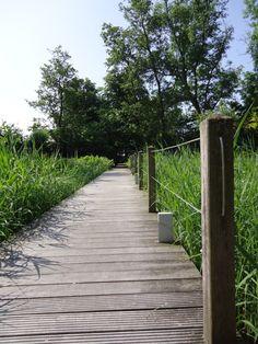 Vanaf het brede houten pad gaan er smallere houten paden richting de legakkers die zich weer vertakken in knuppelpaadjes en houtpaadjes, hierdoor is de gehele tuin op een onopvallende manier toch ontsloten.