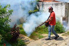 Alcaldía de Guacara profundiza en jornadas de fumigación y cachivacheo en El Prado