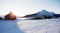 Fou de l'hiver arctique | VisitFinland.com