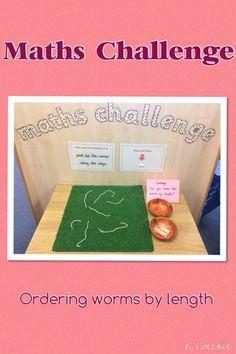 EYFS Maths challenge. Ordering by length. SSM