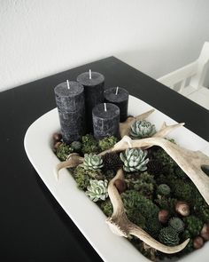 Every year around this time I make one or more decorations with candles and things found in the forest and plants. I just lo...