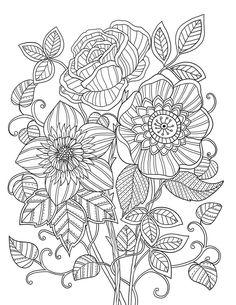 mon jardin intrieur coloring book agenda 2015 on behance - Www Coloring Book Com