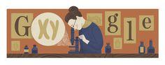155º Aniversário do nascimento de Nettie Stevens