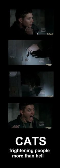 Dean: The look on his face...as funny as his scream-like-a-little-girl. One of the funniest things I have ever seen.