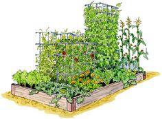 Planera trädgården. Färdiga mallar!!