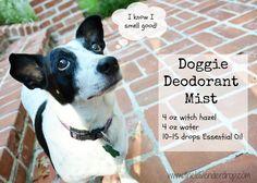 No more STINKY DOG: Stinky dog spray using essential oils; Doggie Deodorant Mist