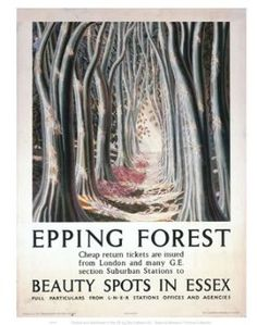 Epping Forest Beauty Spots