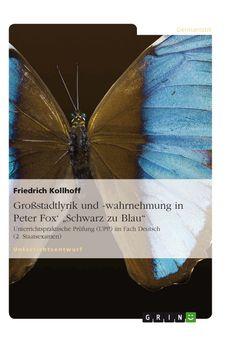 """Großstadtlyrik und -wahrnehmung in Peter Fox' """"Schwarz zu Blau"""". Amazon: http://grin.to/7Vg0u"""