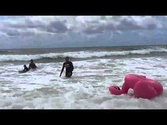Flamingo Surfing on Australia Day