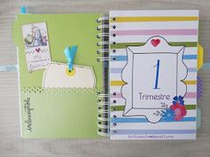 helipapeles@gmail.com Marti, Notebook, Scrapbooking, Album, Pregnancy Journal, Bold Colors, Twins, Pregnancy, Leaves