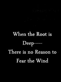 When the root is deep...there is no need to fear the wind.