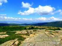 On A Mountain In Maine by Elizabeth Dow - On A Mountain In Maine Photograph - On A Mountain In Maine Fine Art Prints and Posters for Sale