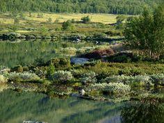 Eldrevatnet Photos - Norway - Around
