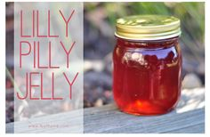 Lilly Pilly Jelly