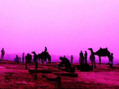 Pink desert by Alice Butera