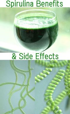 Spirulina contains up to 5 times more protein than meat – up to 65% in some instances, and contains as many as 100 different nutrients including many vitamins, potassium, copper, iron, selenium, zinc and magnesium. It is one of the few products that contains all the essential amino acids, as well as five times more beta-carotene than carrots.