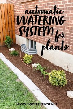 Are you tired of taking the time to water each of your plants individually? The best thing for you can be an automatic watering system. Here I will show you everything you need to install an irrigation drip system for your plants. #twofeetfirst Drip System, Drip Irrigation System, Outdoor Projects, Outdoor Ideas, Outdoor Decor, Outdoor Dining, Outdoor Spaces, Automatic Watering System, Deck Decorating