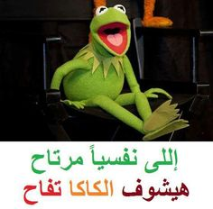 DesertRose,;,ههههههه,;; Crazy Funny Memes, Wtf Funny, Funny Jokes, Funny Frogs, Funny Comments, Kermit, Green Man, Song Quotes, Funny Pictures