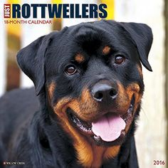 Just Rottweilers 2016 Calendar http://dogpoundspot.com/wp-content/uploads/2015/11/51pm-14rdzL.jpg Amazon Price: CDN$ 17.99 CDN$ 17.99 (as of November 7, 2015 5:27 pm - Details). Product prices  Read  more http://dogpoundspot.com/just-rottweilers-2016-calendar/