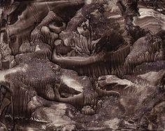 Roland Flexner, Sumi Ink drawing