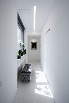 Gallery of P-House / Sycamore - 6