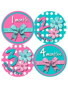12 best mes tras mes bebe images on pinterest baby month stickers