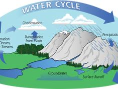 water cycle webquest - lots of videos and resources