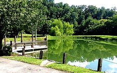 Fish Camp Restaurant - Visit Hickman County Fish Camp Restaurant, Vineyard, Golf Courses, Camping, Restaurants, Outdoor, Link, Campsite, Outdoors