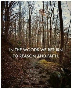 In the woods we return to reason and faith. More important than a concern about the afterlife, should be a concern for this life.
