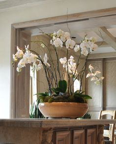 An orchid arrangement brings natural beauty into any space.