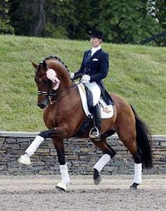 Edward Gal's Lingh  was sold to Karin Offield, and the pair trained with Robert Dover and Anky van Grunsven so that they could create their own dressage history. They were ready to enter the selections for the US Olympic dressage team when Lingh suffered a stable injury. Karin gave him all the time he needed to fully recover. However, now his career as stallion had truly taken off so she decided to concentrate on that.